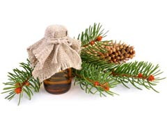 White Fir Essential Oil Uses