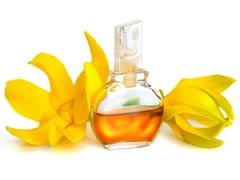 Ylang Ylang Essential Oil Uses
